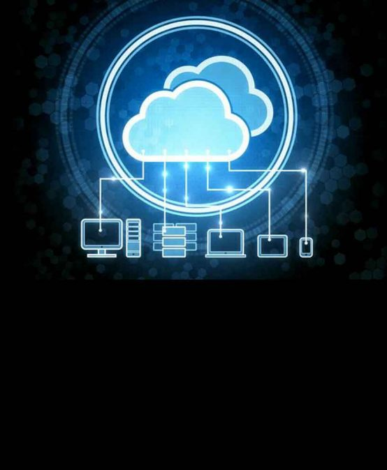 The Pulse of Cloud Computing with Bioinformatics as an Example