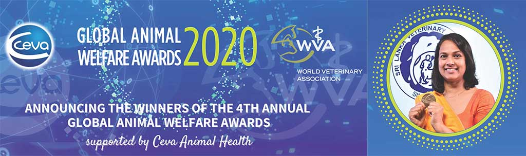 4th Global Animal Welfare Awards 2020