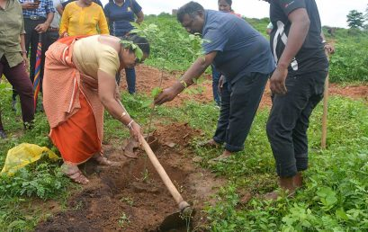 IIM Established a herbal garden collaboration with the IARS