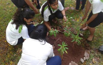 Law Goes Green 2014