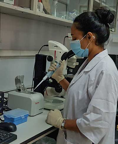 Tropical Medicine Research Center (TMRC) Project