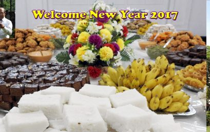 """New Year Celebration 2017"""