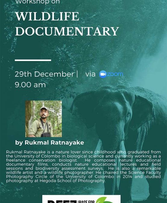 Workshop on Wildlife Documentary
